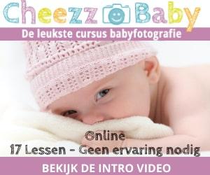 cheezzbaby banner