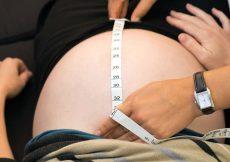fundushoogte en zwangerschap
