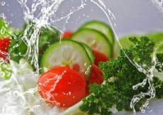 gezondheid, voeding en zwangerschap