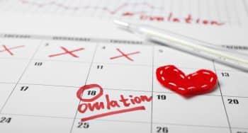 hoe en wanneer ovulatietest doen