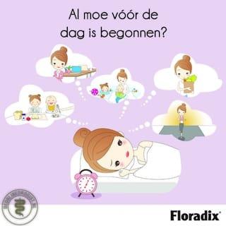 anemie zwangerschap