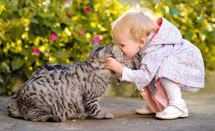 opgroeien met huisdier goed voor kleine kinderen